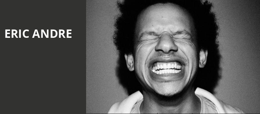 Eric Andre, Vogue Theatre, Vancouver